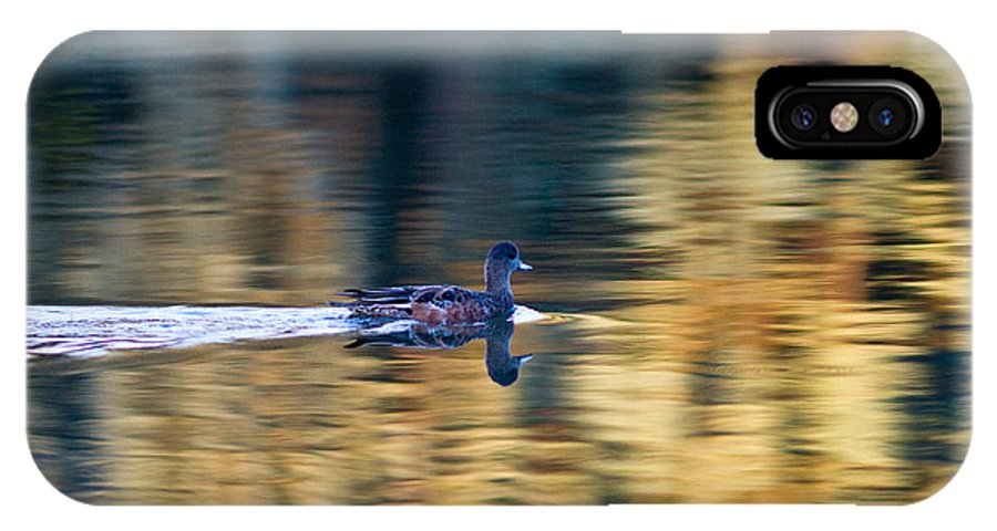 American Wigeon IPhone X Case featuring the photograph American Wigeon 1 by Terry Elniski