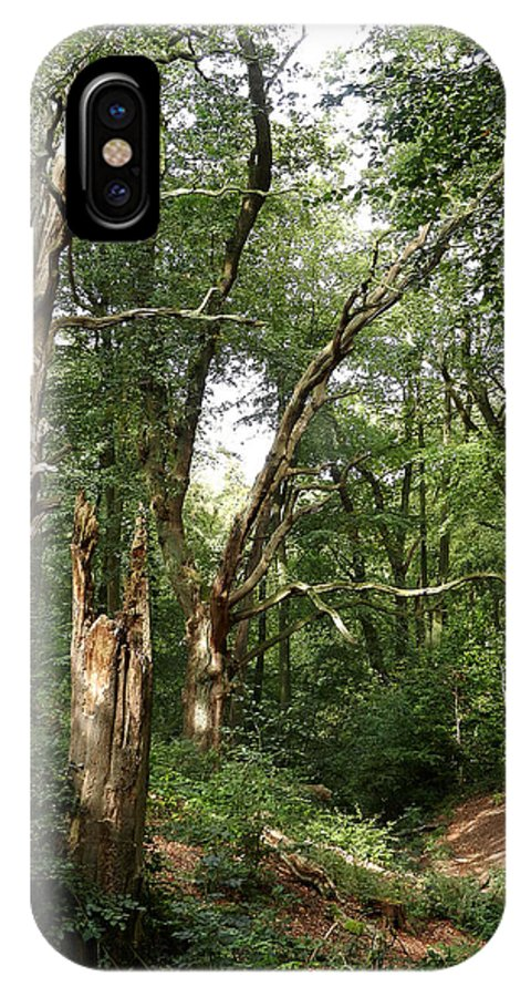Ancient Woodland IPhone X Case featuring the photograph Ancient Woodland by Bob Kemp