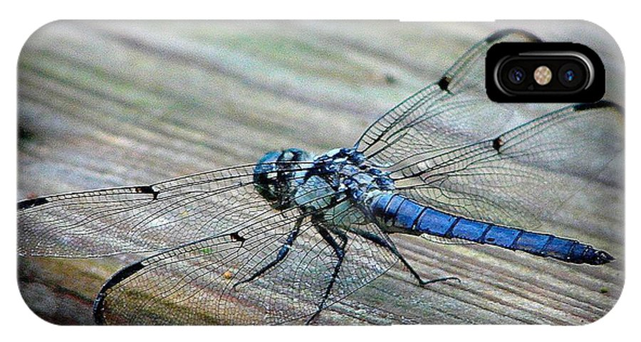 Anisoptera IPhone X Case featuring the photograph Anisoptera by Priscilla Richardson