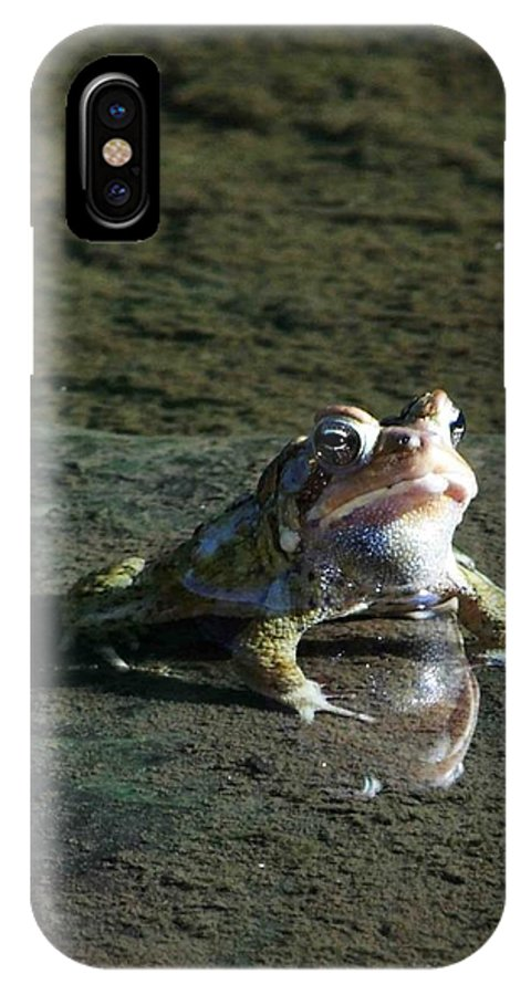 Frog IPhone X Case featuring the photograph Attitude by Dennis Comins
