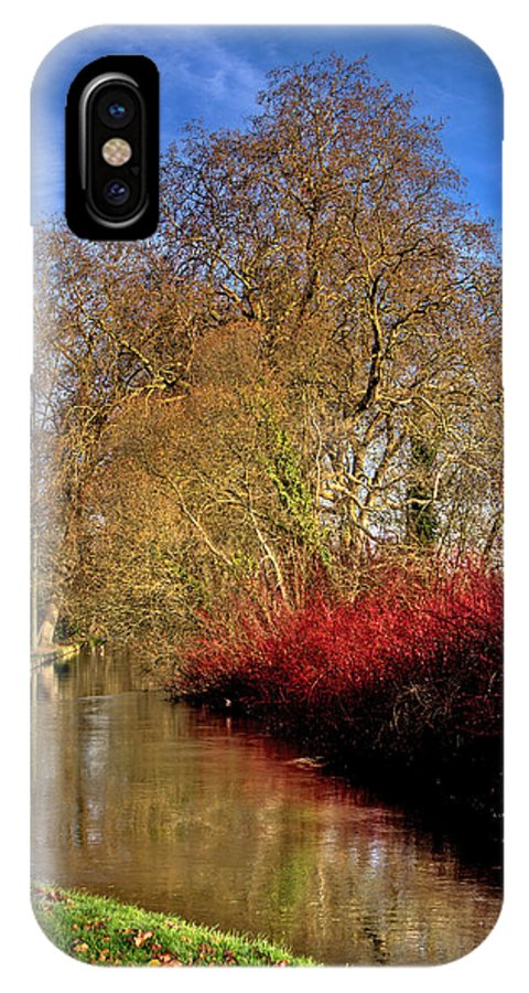 Dogwood IPhone X Case featuring the photograph Autumn Dogwood by Alan Pickersgill