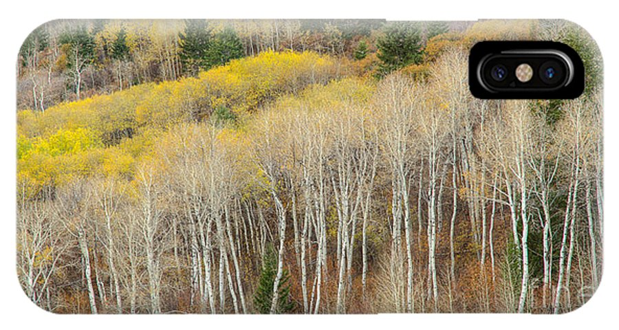 Idaho IPhone X Case featuring the photograph Autumn Layers by Idaho Scenic Images Linda Lantzy