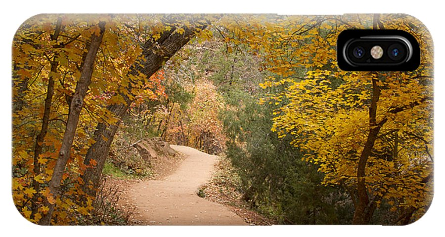 Trail IPhone X Case featuring the photograph Autumn On Emerald Trail by Idaho Scenic Images Linda Lantzy