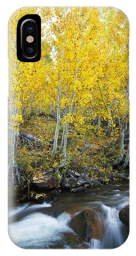 Aspen IPhone X Case featuring the photograph Autumn Stream Iv by MakenaStockMedia - Printscapes