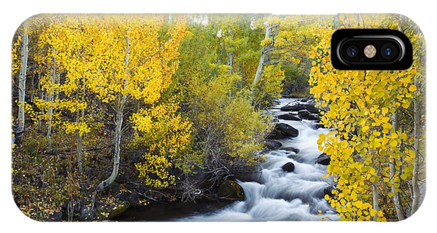 Aspen IPhone X Case featuring the photograph Autumn Stream V by MakenaStockMedia - Printscapes