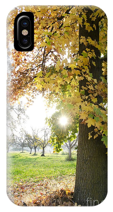 Autumn IPhone X Case featuring the photograph Autumn Sunset by Jim And Emily Bush