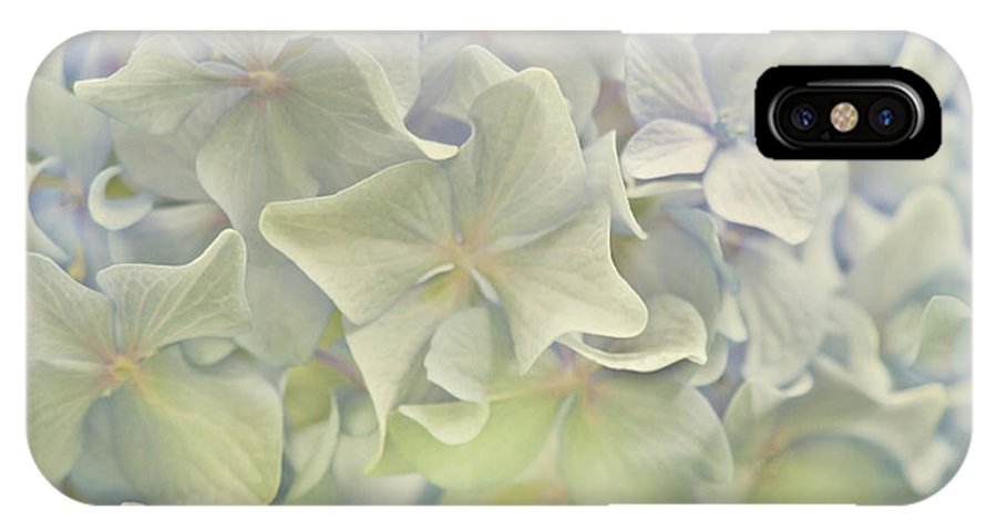 Hydrangea IPhone X Case featuring the photograph Baby Blues by Cheryl Butler
