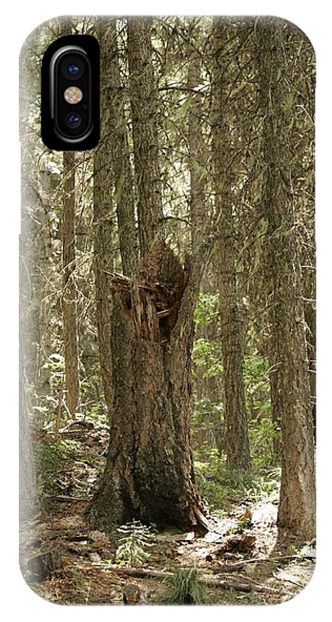 Tree IPhone X Case featuring the photograph Back To Nature by One Rude Dawg Orcutt