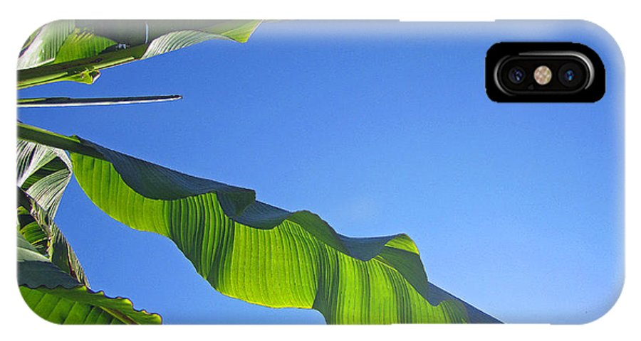 Banana IPhone X Case featuring the photograph Banana Leaf In The Sky by Tracy Long