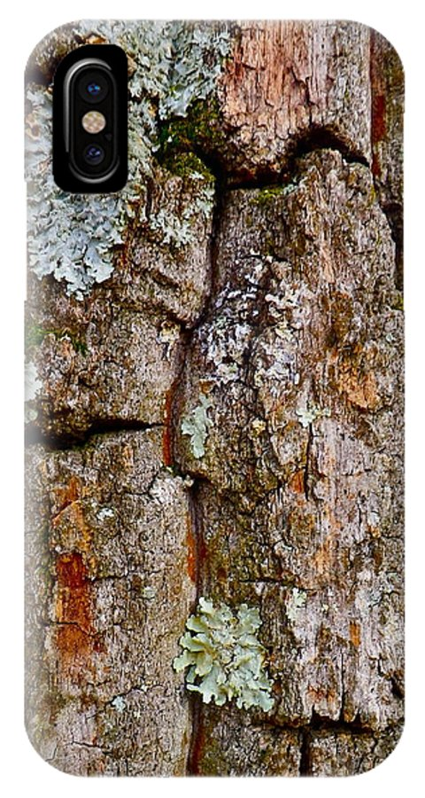 Tree IPhone X Case featuring the photograph Bark At Me by Anna Ruzsan