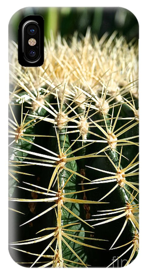 Outdoors IPhone X Case featuring the photograph Barrel Cactus by Susan Herber