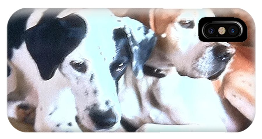 Dogs IPhone X / XS Case featuring the mixed media Beauties by B Russo