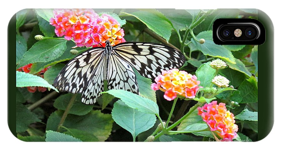 Butterfly IPhone X Case featuring the photograph Beautiful Butterfly And Flowers by Phyllis Kaltenbach