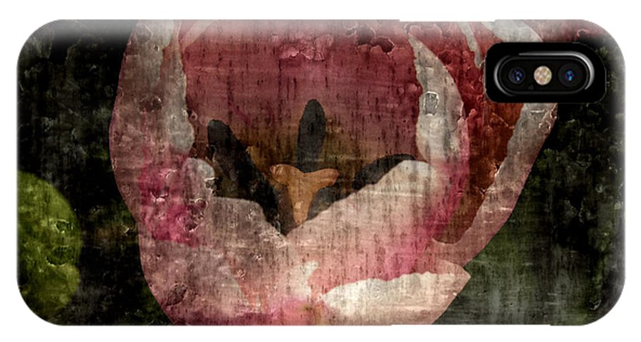 Decay IPhone X Case featuring the photograph Beautiful Decay by Bonnie Bruno