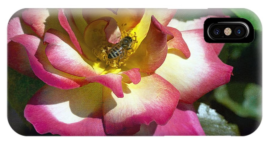 Bee IPhone X Case featuring the photograph Beauty And The Bee by Linda Dunn
