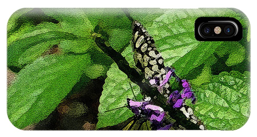 Butterfly IPhone X Case featuring the photograph Beauty Below by Nina Fosdick