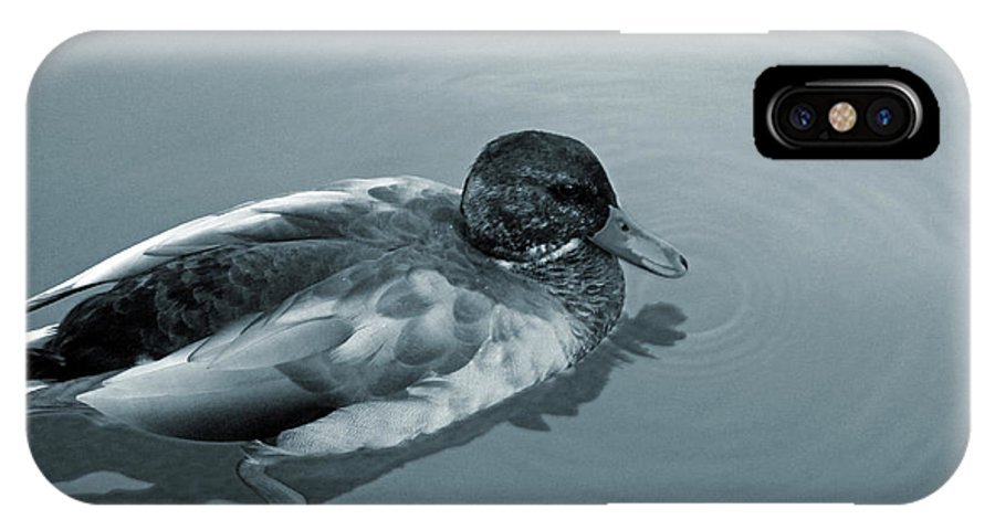 Duck IPhone X Case featuring the photograph Beauty On The Water by Brenda Donko