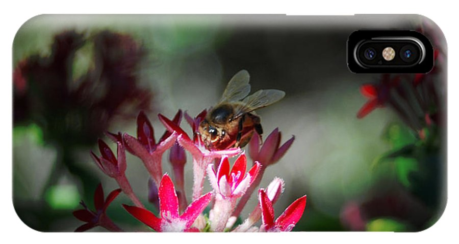 Kelly Rader IPhone X / XS Case featuring the photograph Bee by Kelly Rader