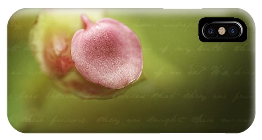 Flower IPhone X Case featuring the photograph Begonia Bud by Fran Gallogly