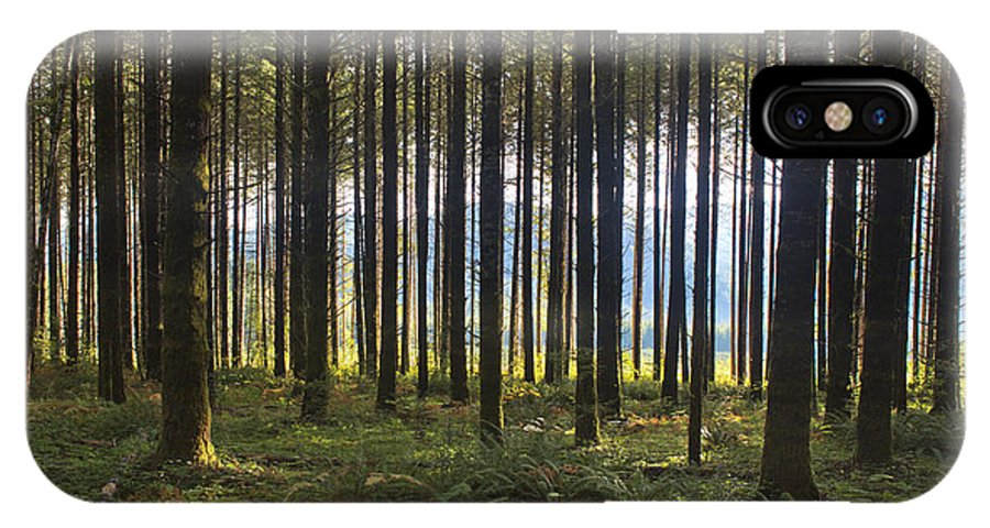 Art IPhone X Case featuring the photograph Beyond The Woods by Belinda Greb