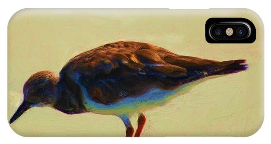 Fine Art IPhone X Case featuring the photograph Bird On Daytona Beach by David Lane