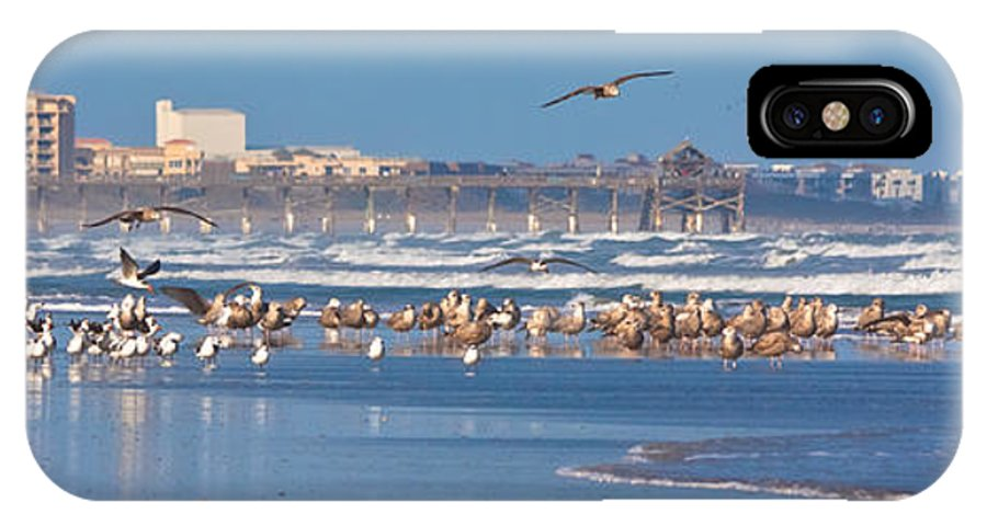 Birds IPhone X Case featuring the photograph Birds Only Beach by Ed Gleichman