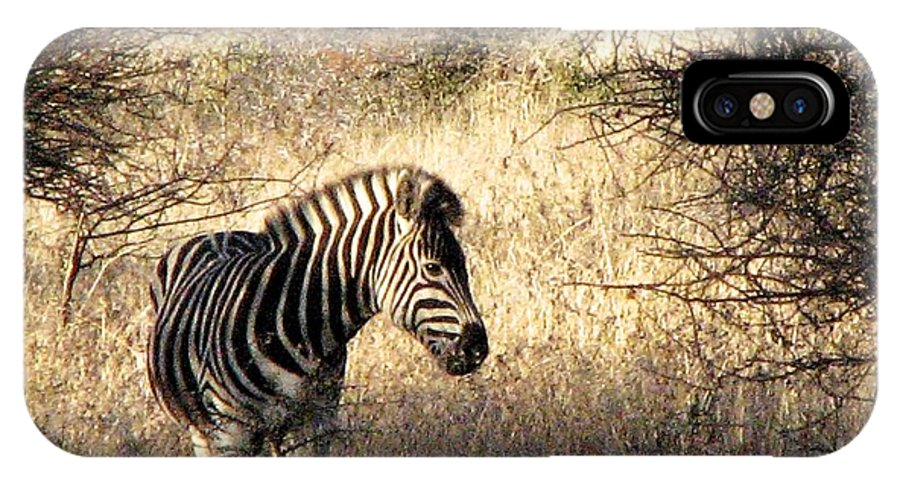 Zebra IPhone X Case featuring the photograph Black And White by William Fields