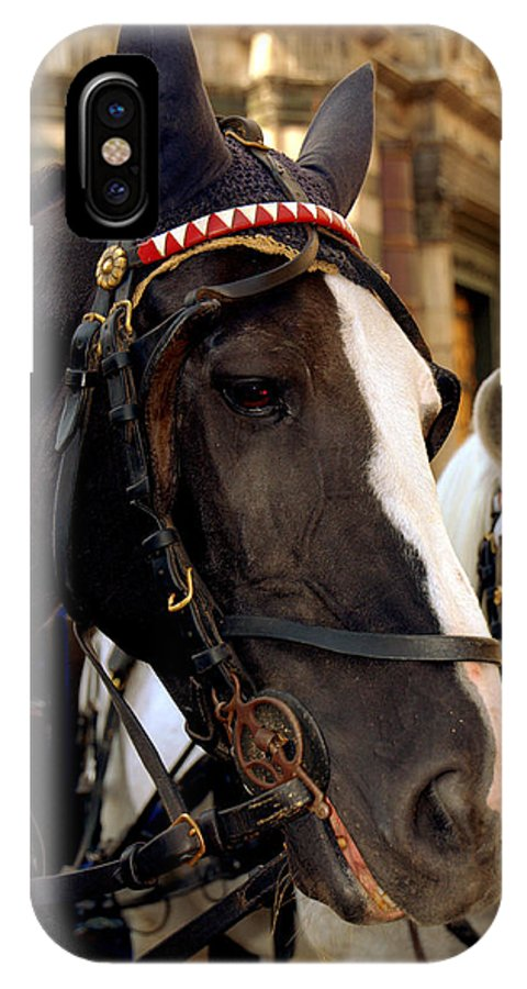 Italy IPhone X Case featuring the photograph Black Beauty by Caroline Stella