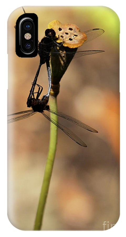 Dragonfly IPhone X Case featuring the photograph Black Dragonfly Love by Sabrina L Ryan