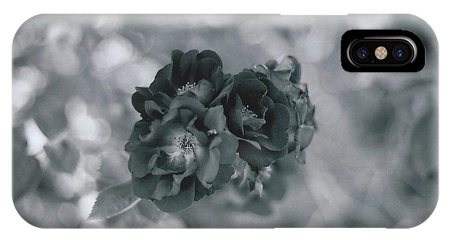 Roses IPhone X / XS Case featuring the photograph Black Rose With Bokeh by Catherine Conroy