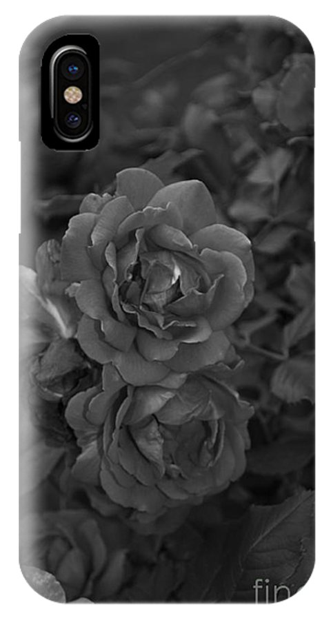 Roses IPhone X / XS Case featuring the photograph Black Roses by Catherine Conroy