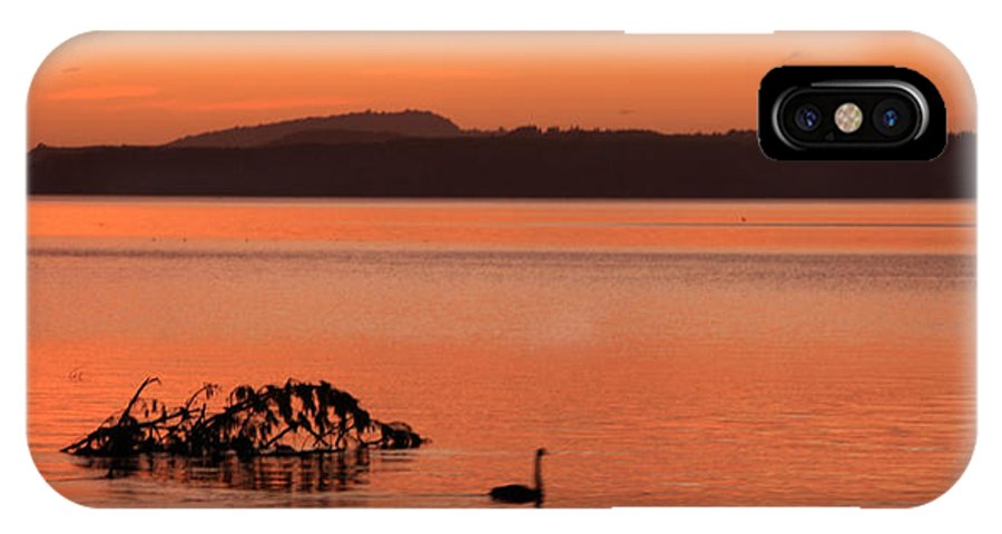 IPhone X Case featuring the photograph Black Swan Swims In Rotortua by Rebecca Akporiaye