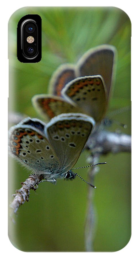 Sinisiipi IPhone X Case featuring the photograph Blue 2 Together by Jouko Lehto