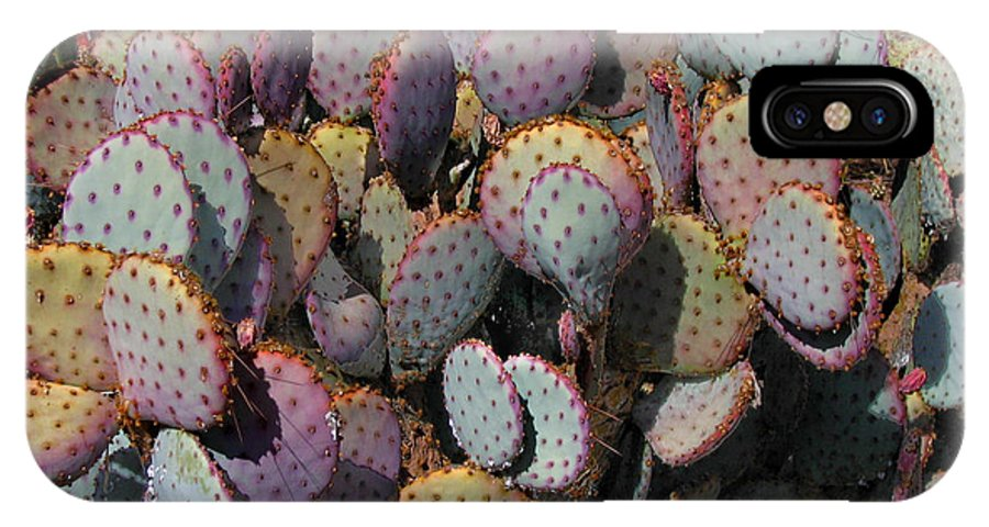 Cactus IPhone X / XS Case featuring the photograph Blue Cactus by Denise Keegan Frawley