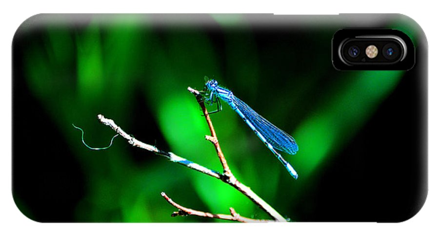 Blue Damsel Fly IPhone X Case featuring the photograph Blue Damsel by Susanne Still