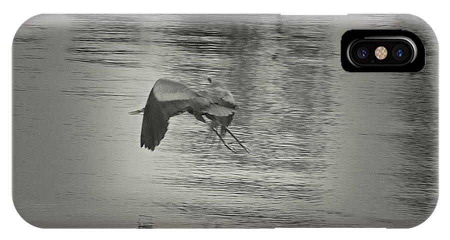 Blue Heron In Platinum IPhone X / XS Case featuring the photograph Blue Heron In Platinum by Douglas Barnard