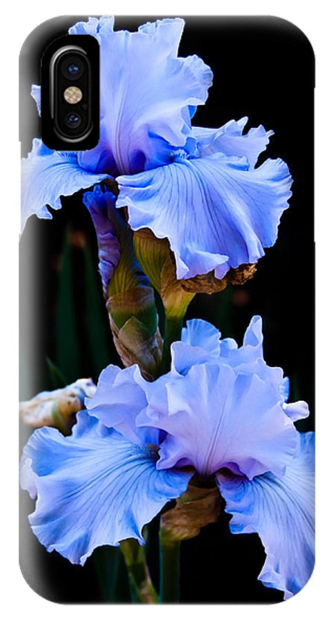 Flora IPhone X Case featuring the photograph Blue Iris by Lynne Jenkins