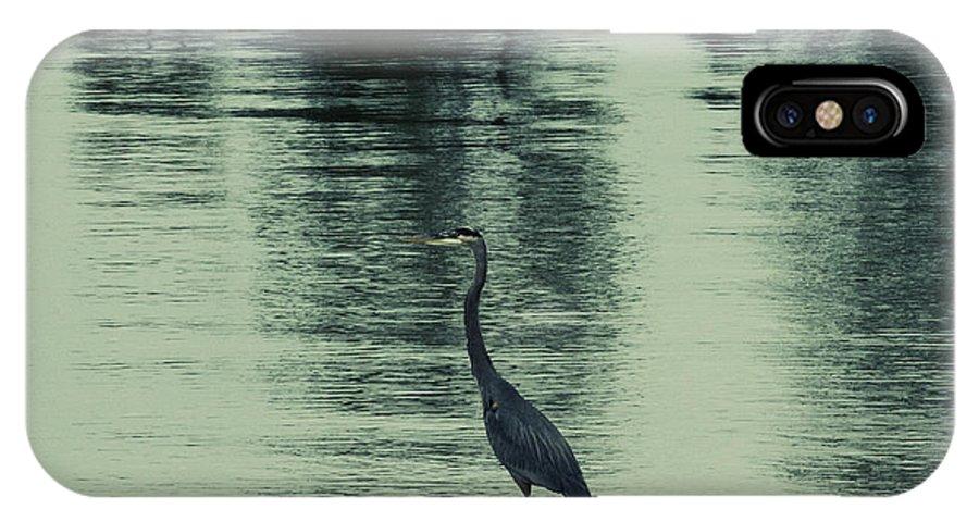 Blue Heron IPhone X / XS Case featuring the photograph Bluegreen Lake by Douglas Barnard