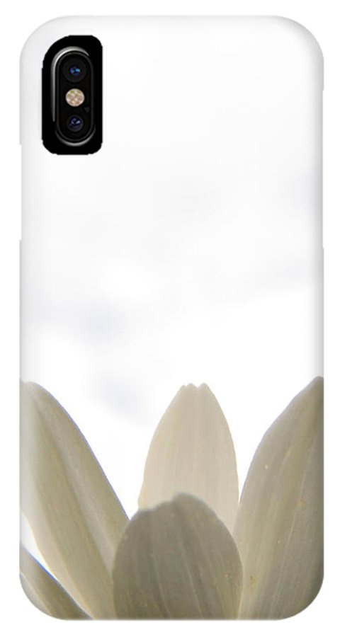 Daisy IPhone X Case featuring the photograph Bottom Fringe by Corinne Elizabeth Cowherd