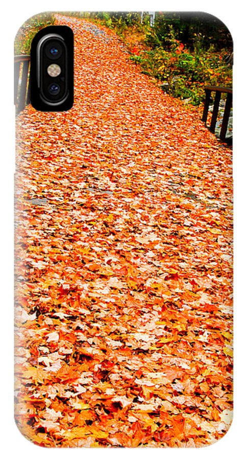 Leaves IPhone X Case featuring the photograph Bridge Of Leaves by Lyn Scott