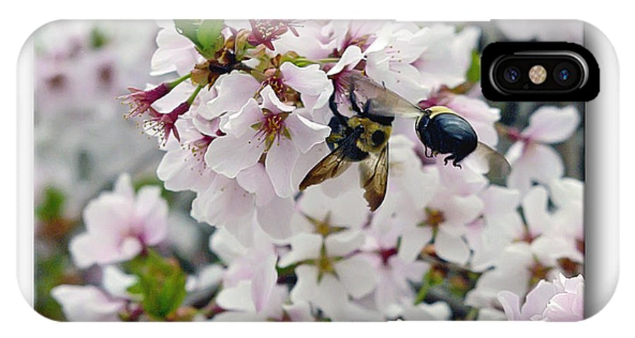 2d IPhone X Case featuring the photograph Busy Bees by Brian Wallace
