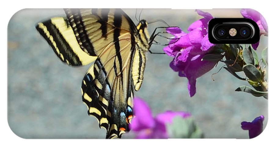 Yellow And Black Butterfly IPhone X Case featuring the photograph Butterfly by Afroditi Katsikis