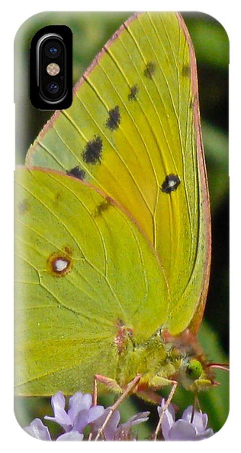 Butterfly Collection Macro IPhone X Case featuring the photograph Butterfly Collection Macro by Debra   Vatalaro
