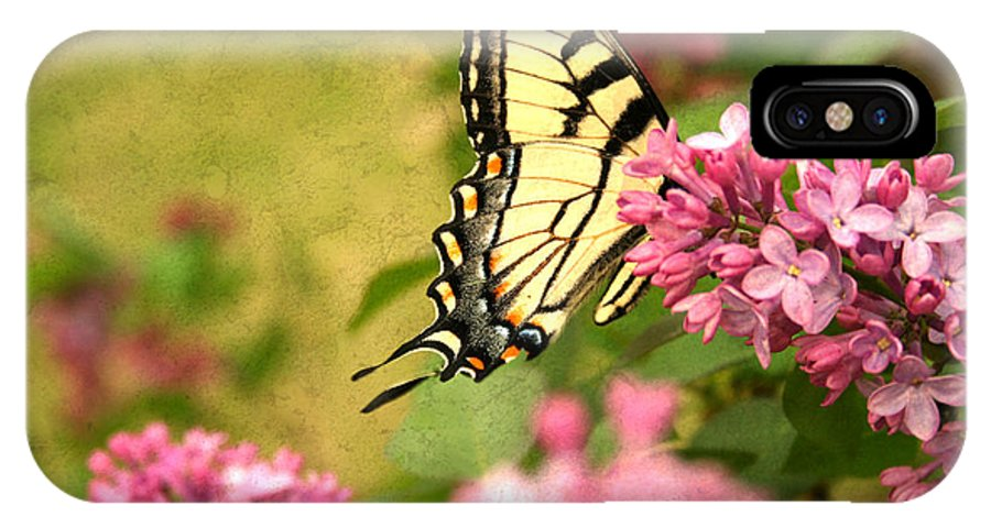 Butterfly IPhone X Case featuring the photograph Butterfly by Darren Fisher