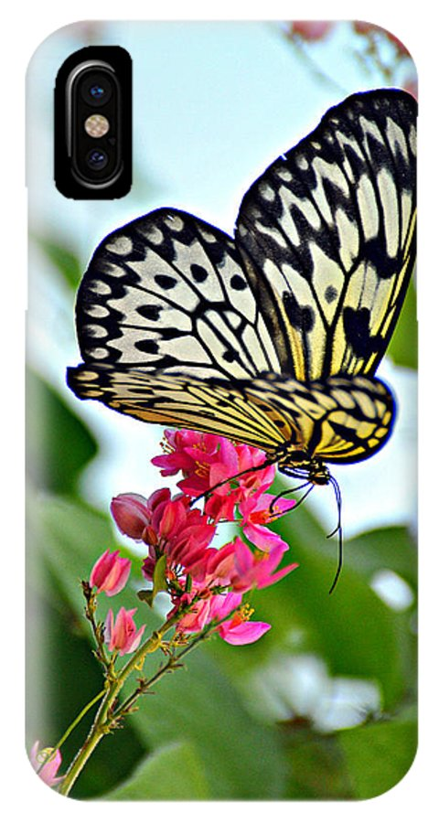 Butterfly IPhone X Case featuring the photograph Butterfly Glow by Marty Koch