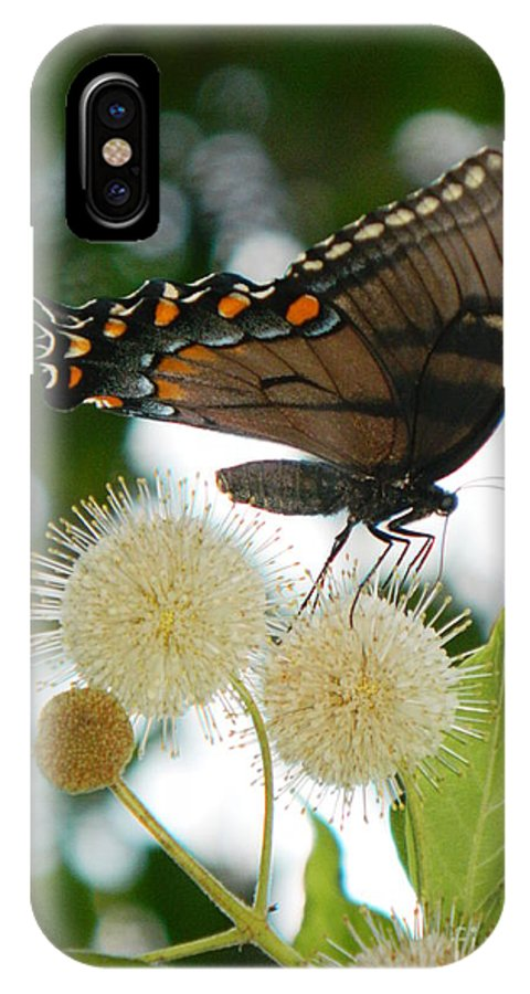 Butterfly IPhone X Case featuring the photograph Butterfly II by Ester Rogers