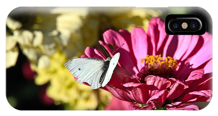 Flowers IPhone X Case featuring the photograph Butterfly On Flower by Steve McKinzie