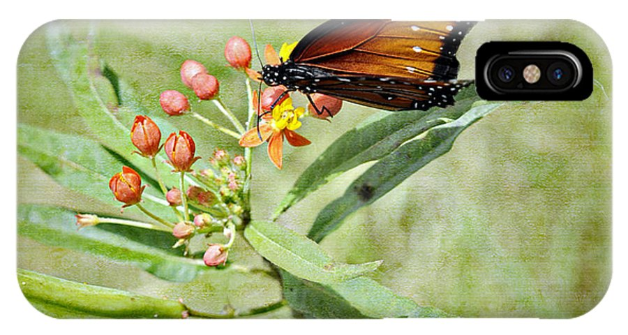 Butterfly IPhone X Case featuring the photograph Butterfly by Tammy Lee Bradley