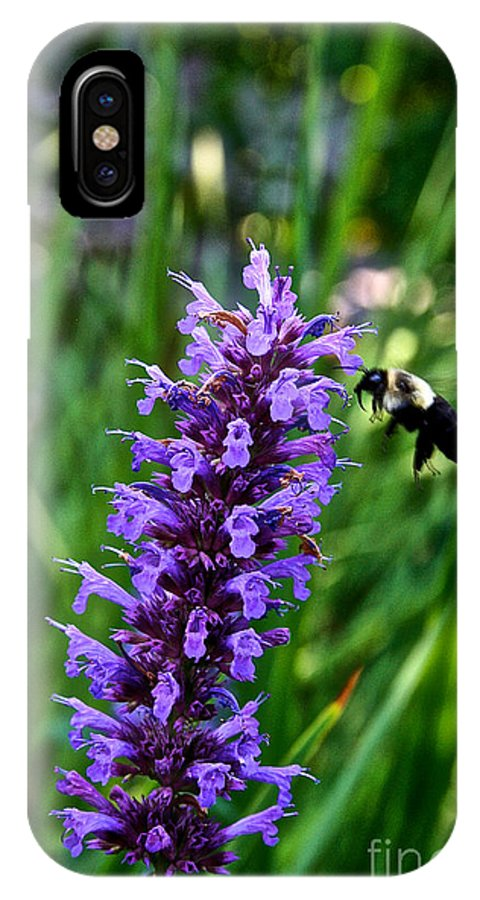Outdoors IPhone X Case featuring the photograph Buzzing Hyssop by Susan Herber