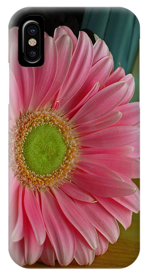 Gerber IPhone X Case featuring the photograph Cadie's Gerber by Julie Thurgood